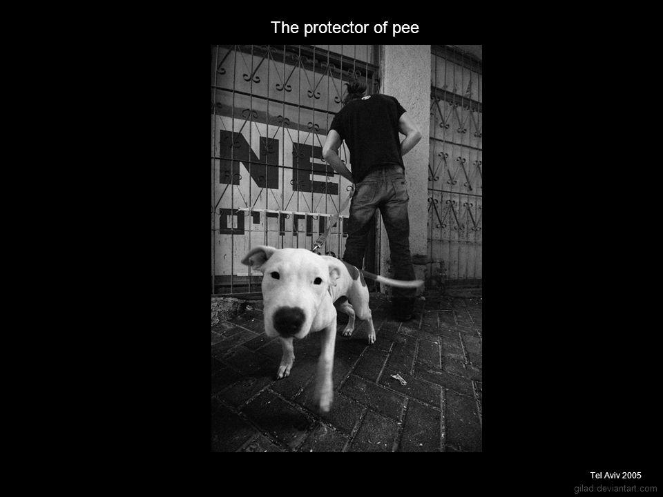 gilad.deviantart.com The protector of pee Tel Aviv 2005