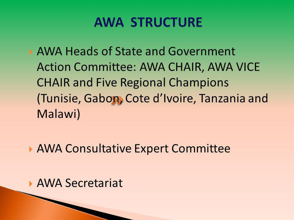  AWA Heads of State and Government Action Committee: AWA CHAIR, AWA VICE CHAIR and Five Regional Champions (Tunisie, Gabon, Cote d'Ivoire, Tanzania a
