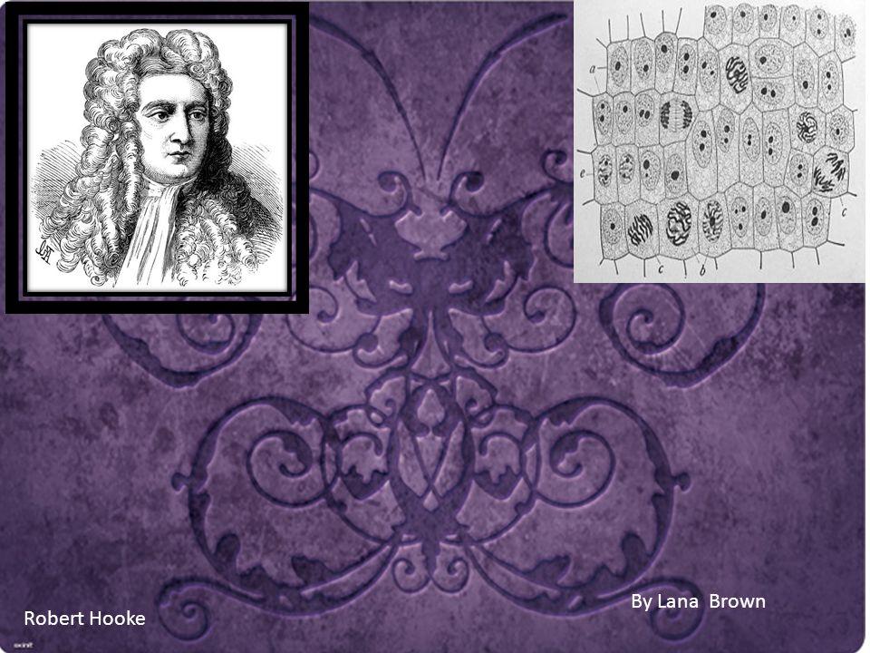 By Lana Brown Robert Hooke