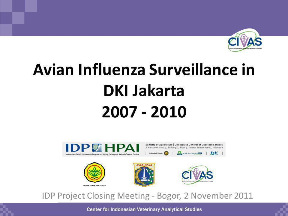 Presentation Outline Introduction Jakarta Surveillance Activity – Sentinel surveillance in 2007 and 2009-2010 – Surveillance of incoming poultry batches in 2008 and 2009-2010 Discussion - implications – Public health – Animal health/disease control – Implications for surveillance Conclusions of the total Jakarta surveillance activities 2