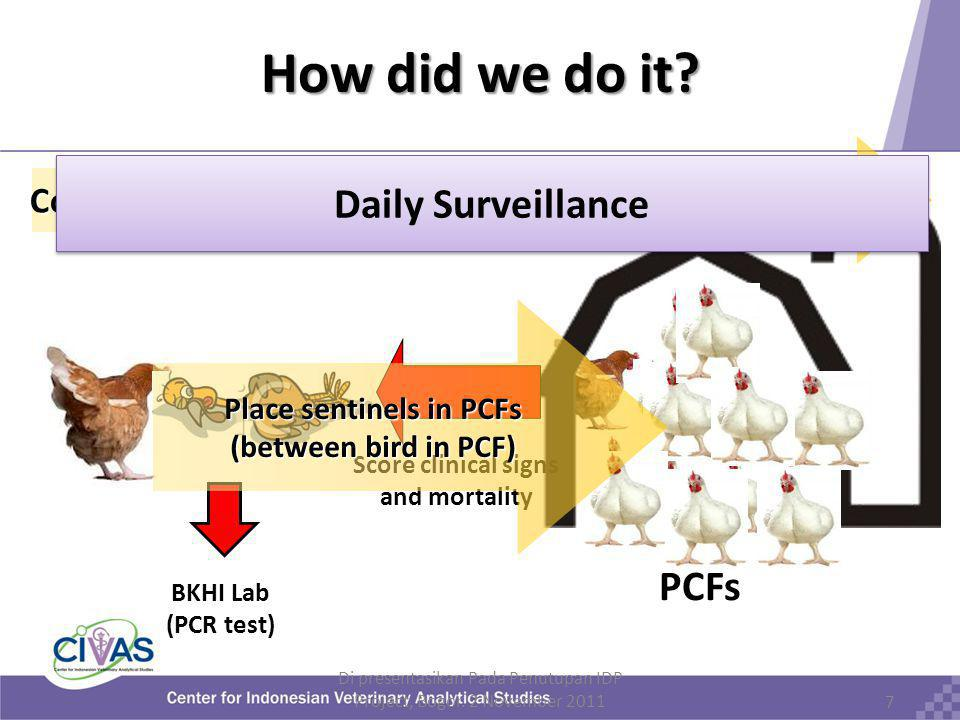 7 Continuous surveillance during 90 (2007)or 60 d.