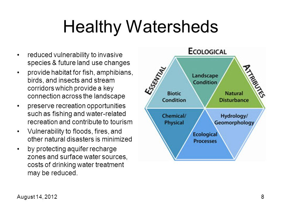 Healthy Watersheds reduced vulnerability to invasive species & future land use changes provide habitat for fish, amphibians, birds, and insects and stream corridors which provide a key connection across the landscape preserve recreation opportunities such as fishing and water-related recreation and contribute to tourism Vulnerability to floods, fires, and other natural disasters is minimized by protecting aquifer recharge zones and surface water sources, costs of drinking water treatment may be reduced.