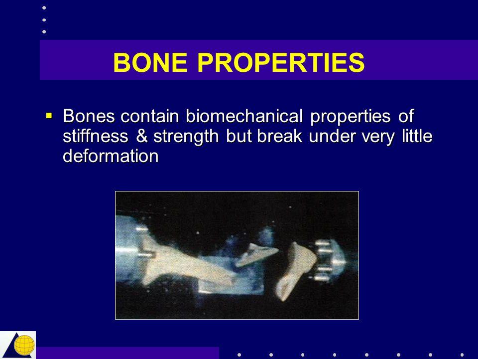 BONE PROPERTIES  Bones contain biomechanical properties of stiffness & strength but break under very little deformation