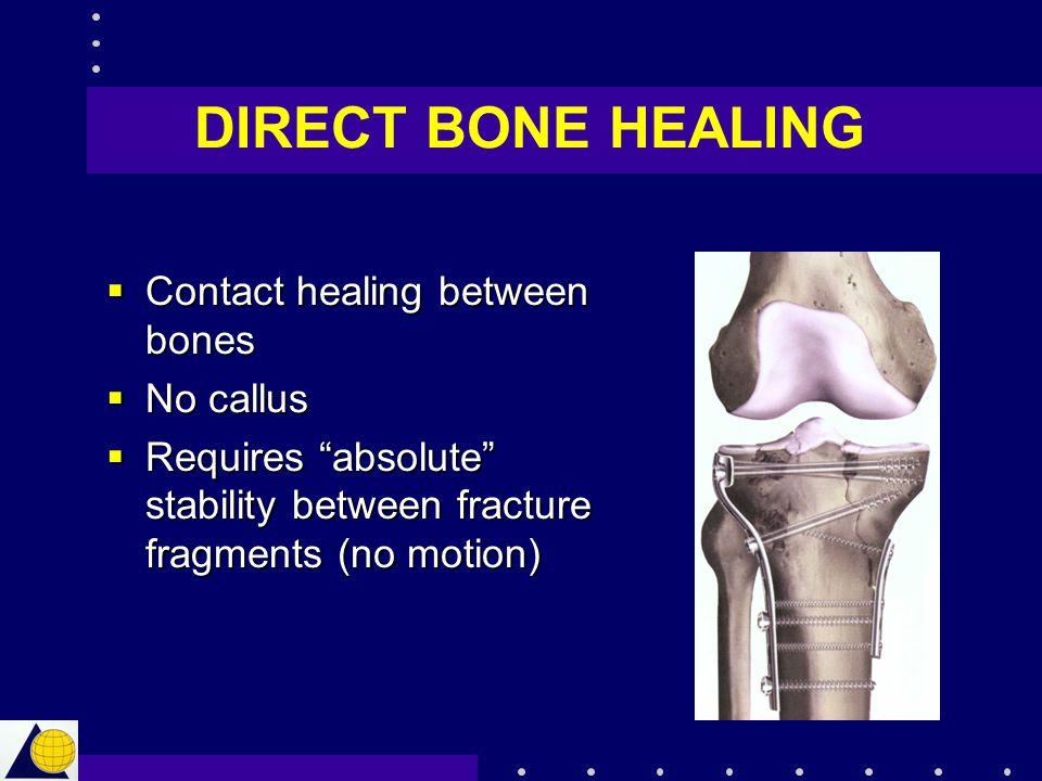 "DIRECT BONE HEALING  Contact healing between bones  No callus  Requires ""absolute"" stability between fracture fragments (no motion)"