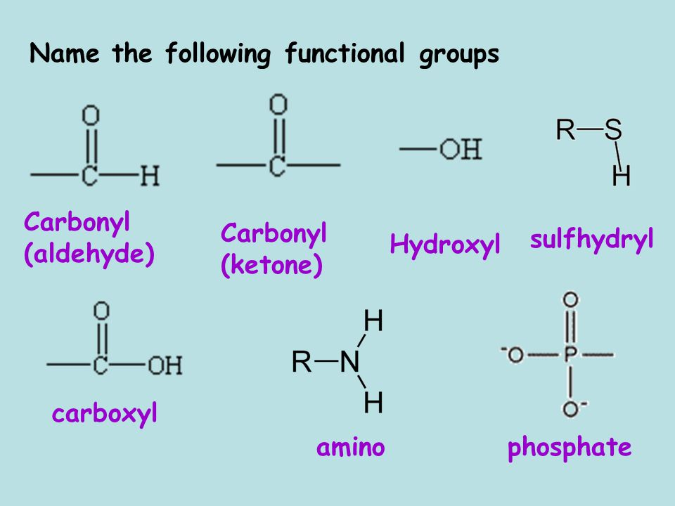 Name the following functional groups Carbonyl (aldehyde) amino Carbonyl (ketone) carboxyl Hydroxyl sulfhydryl phosphate