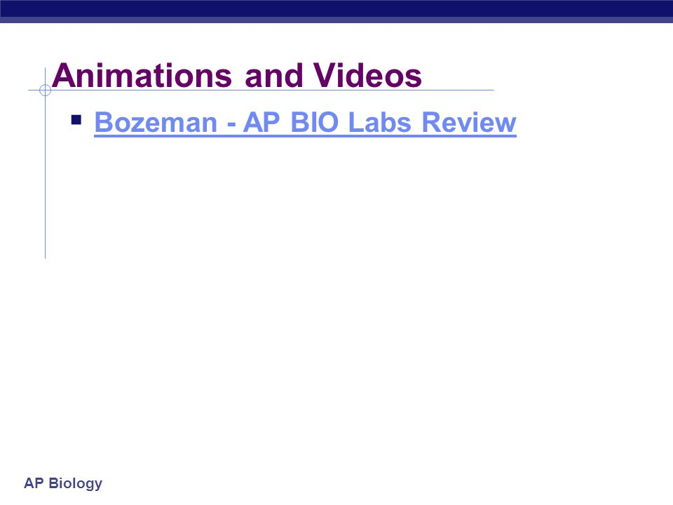 AP Biology Animations and Videos  Bozeman - AP BIO Labs Review Bozeman - AP BIO Labs Review
