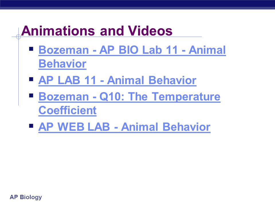 AP Biology Animations and Videos  Bozeman - AP BIO Lab 11 - Animal Behavior Bozeman - AP BIO Lab 11 - Animal Behavior  AP LAB 11 - Animal Behavior A
