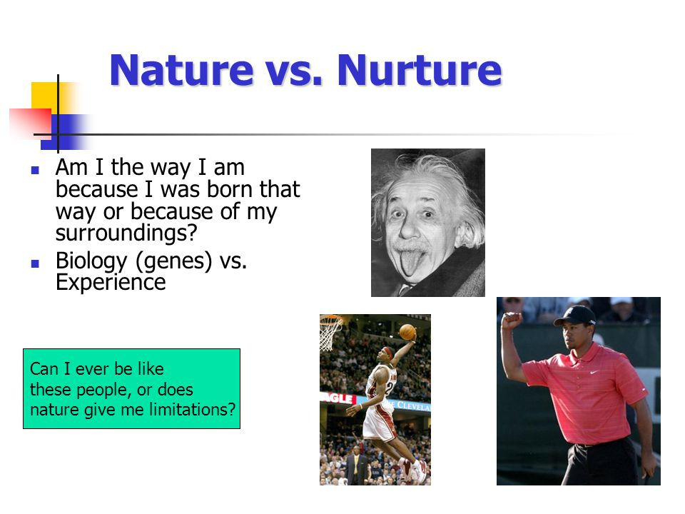 Rationality vs. Irrationality Are we wise or not.