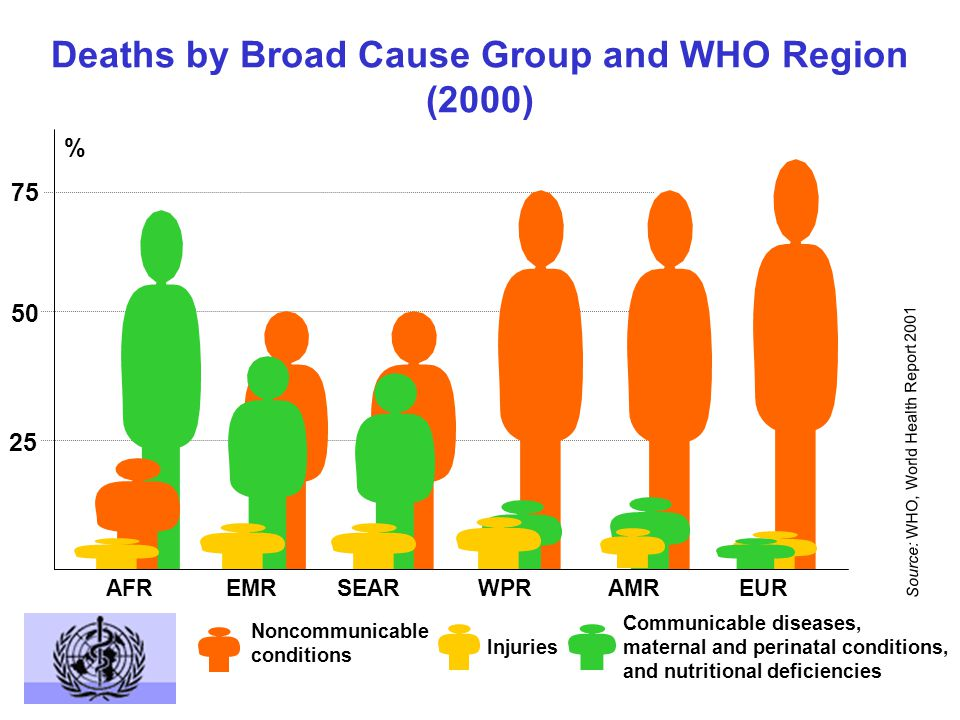 Deaths due to CVD (by WHO Region, 2000) Strokes Heart attacks AFR EMREURSEARWPR AMR 10 20 30 % Deaths Source: WHO, World Health Report 2001