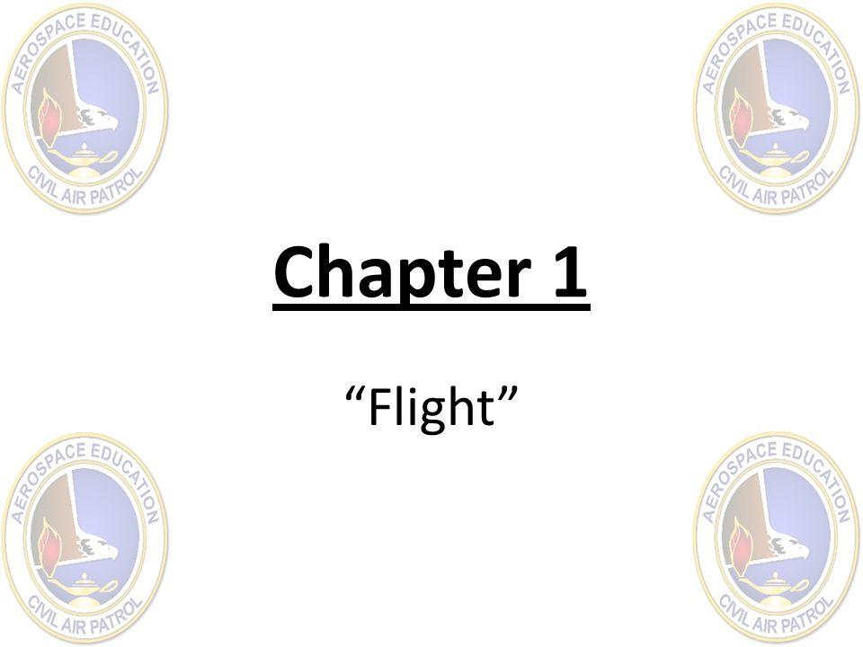 "Chapter 1 ""Flight"""