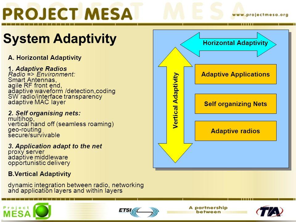 System Adaptivity A. Horizontal Adaptivity 1.