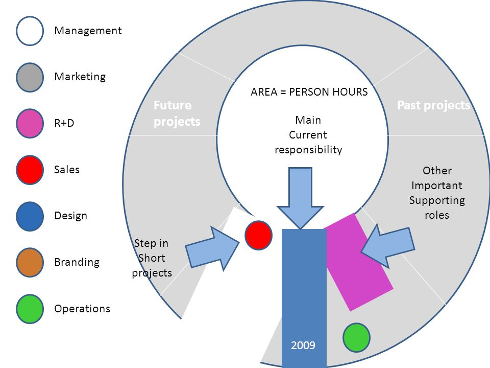 Current projects Past projectsFuture projects Main Current responsibility Management Marketing R+D Design Sales Branding Operations 2009 Step in Short projects Other Important Supporting roles AREA = PERSON HOURS