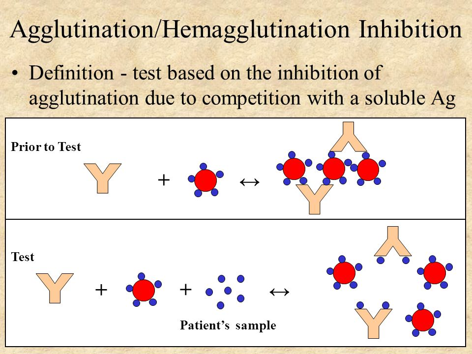 Agglutination/Hemagglutination Inhibition Definition - test based on the inhibition of agglutination due to competition with a soluble Ag + ↔ Prior to Test + ↔ + Test Patient's sample