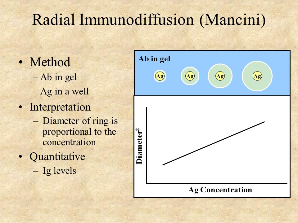 Radial Immunodiffusion (Mancini) Interpretation –Diameter of ring is proportional to the concentration Quantitative –Ig levels Method – Ab in gel – Ag in a well Ag Concentration Diameter 2 Ag Ab in gel