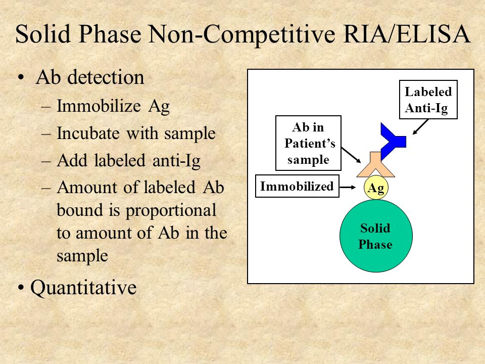Solid Phase Non-Competitive RIA/ELISA Ab detection –Immobilize Ag –Incubate with sample –Add labeled anti-Ig –Amount of labeled Ab bound is proportional to amount of Ab in the sample Quantitative Solid Phase Ag Immobilized Ab in Patient's sample Labeled Anti-Ig