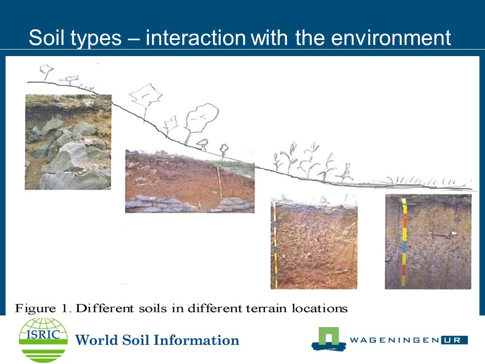 Soil types – interaction with the environment