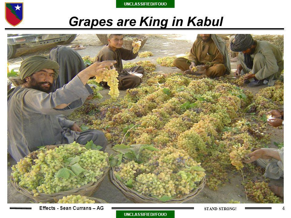 4 UNCLASSIFIED//FOUO Effects - Sean Currans – AG Grapes are King in Kabul