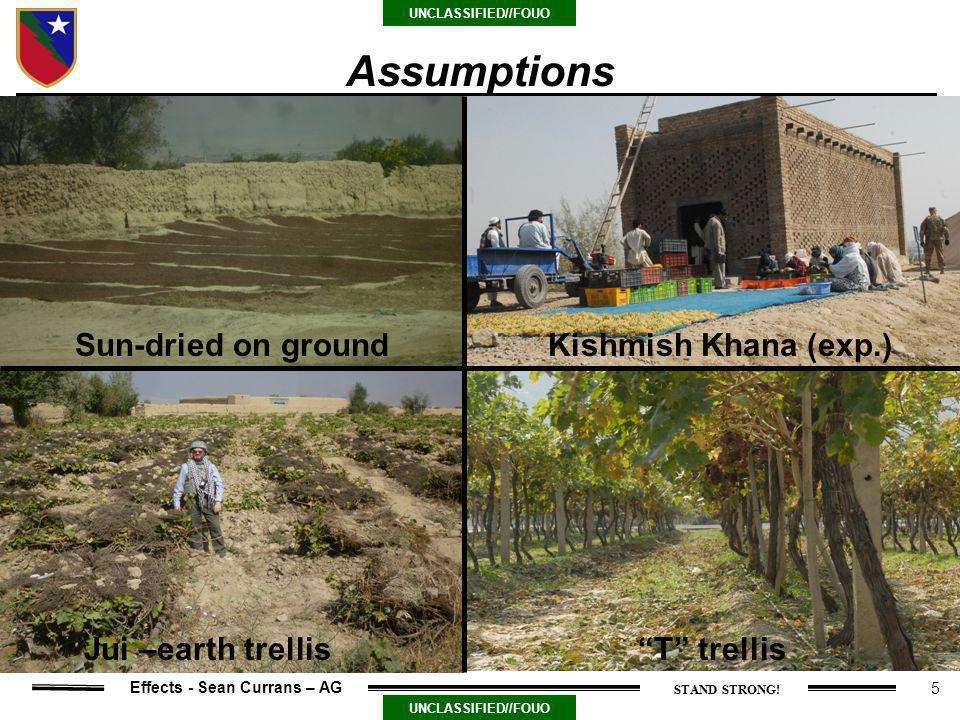 5 UNCLASSIFIED//FOUO Effects - Sean Currans – AG Assumptions Sun-dried on ground T trellisJui –earth trellis Kishmish Khana (exp.)