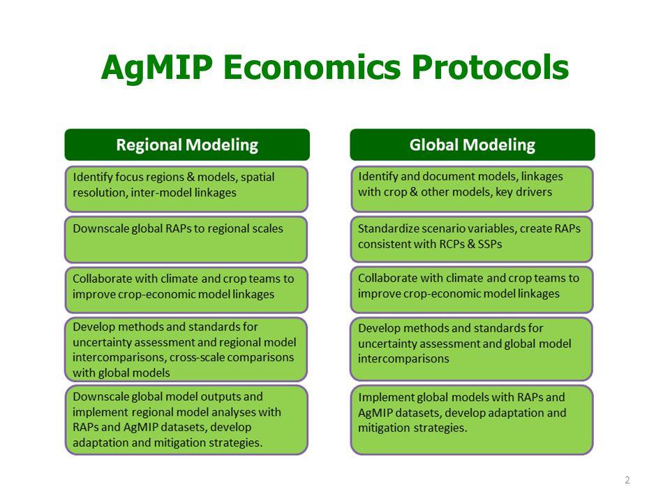 2 AgMIP Economics Protocols