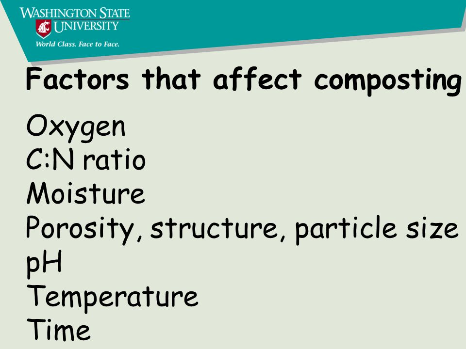 Factors that affect composting Oxygen C:N ratio Moisture Porosity, structure, particle size pH Temperature Time