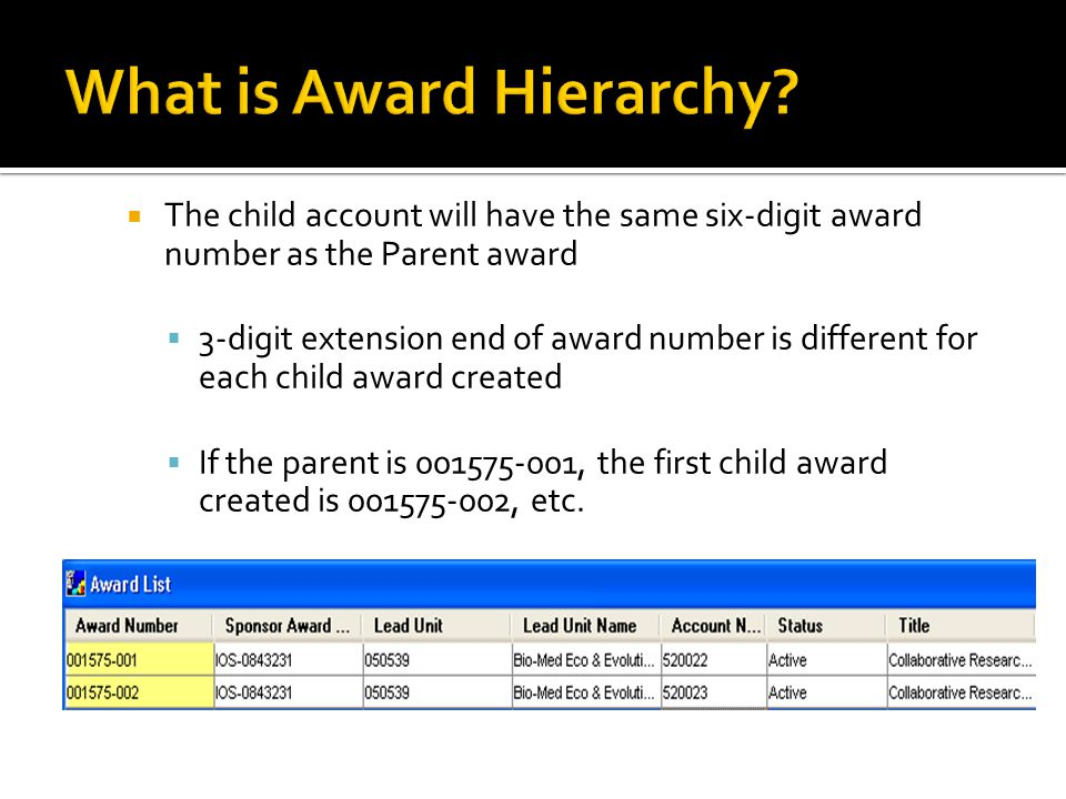  The child account will have the same six-digit award number as the Parent award  3-digit extension end of award number is different for each child