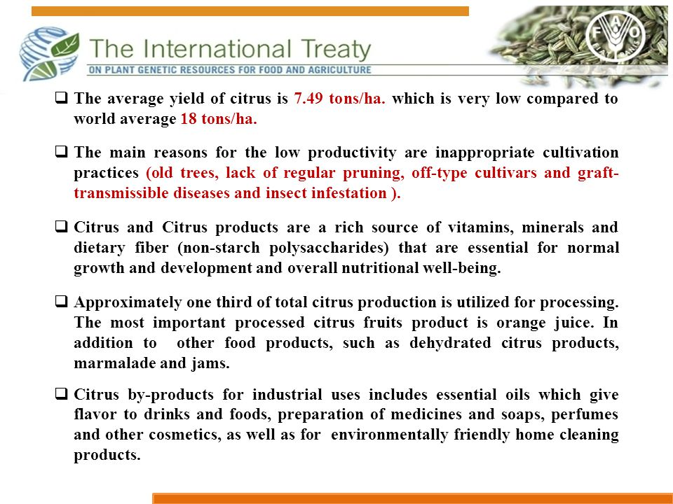  The average yield of citrus is 7.49 tons/ha. which is very low compared to world average 18 tons/ha.  The main reasons for the low productivity are