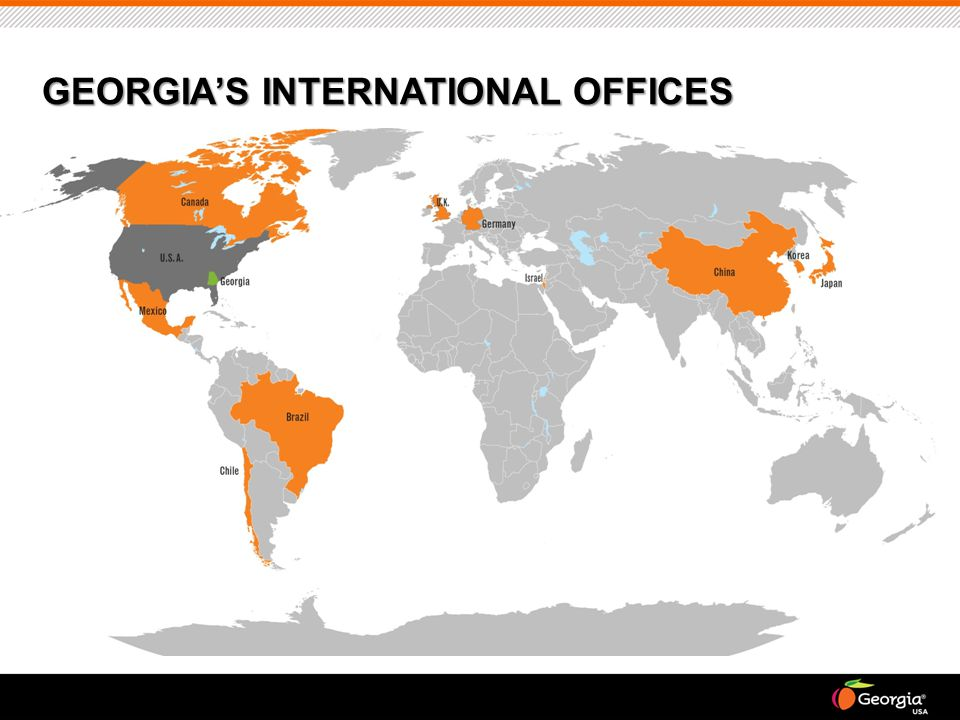 GEORGIA'S INTERNATIONAL OFFICES