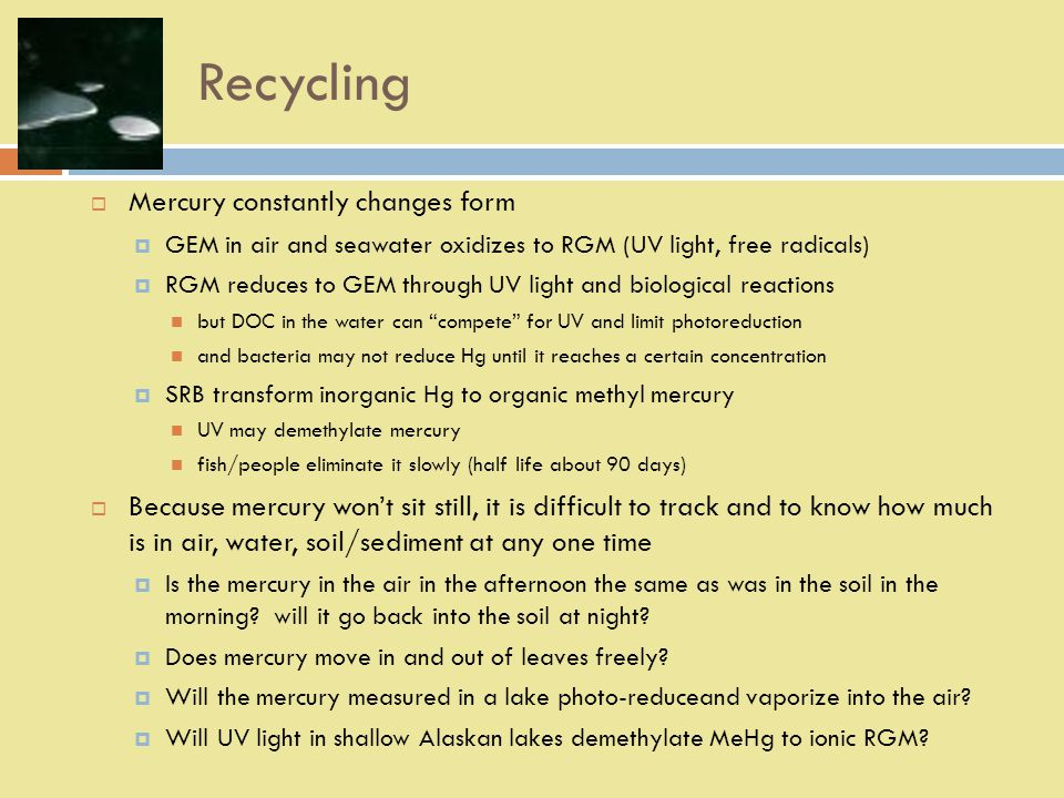 Recycling  Mercury constantly changes form  GEM in air and seawater oxidizes to RGM (UV light, free radicals)  RGM reduces to GEM through UV light and biological reactions but DOC in the water can compete for UV and limit photoreduction and bacteria may not reduce Hg until it reaches a certain concentration  SRB transform inorganic Hg to organic methyl mercury UV may demethylate mercury fish/people eliminate it slowly (half life about 90 days)  Because mercury won't sit still, it is difficult to track and to know how much is in air, water, soil/sediment at any one time  Is the mercury in the air in the afternoon the same as was in the soil in the morning.