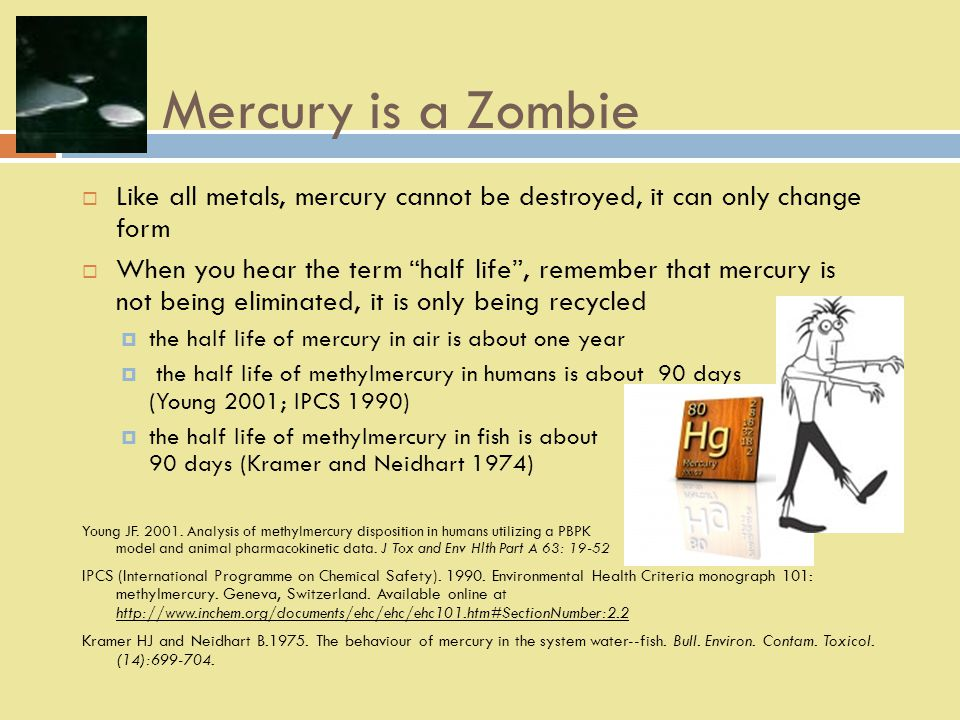 Mercury is a Zombie  Like all metals, mercury cannot be destroyed, it can only change form  When you hear the term half life , remember that mercury is not being eliminated, it is only being recycled  the half life of mercury in air is about one year  the half life of methylmercury in humans is about 90 days (Young 2001; IPCS 1990)  the half life of methylmercury in fish is about 90 days (Kramer and Neidhart 1974) Young JF.