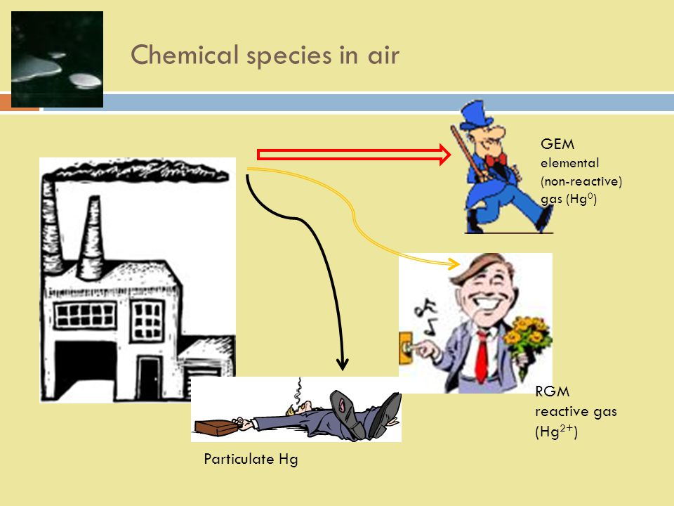 Chemical species in air Particulate Hg RGM reactive gas (Hg 2+ ) GEM elemental (non-reactive) gas (Hg 0 )