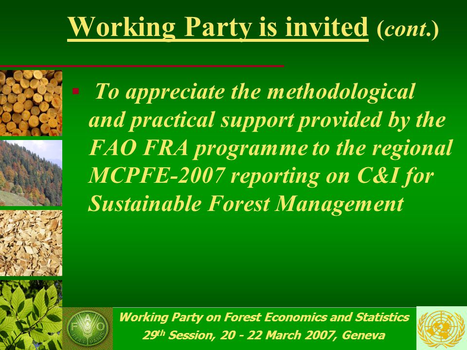 Working Party on Forest Economics and Statistics 29 th Session, 20 - 22 March 2007, Geneva Working Party is invited  To review the process of implementation of the MCPFE-2007 reporting on quantitative and qualitative indicators for SFM, and provide guidance for future work in this area  To comment on the pilot enquiry on private forest ownership, and the expected study on the subject