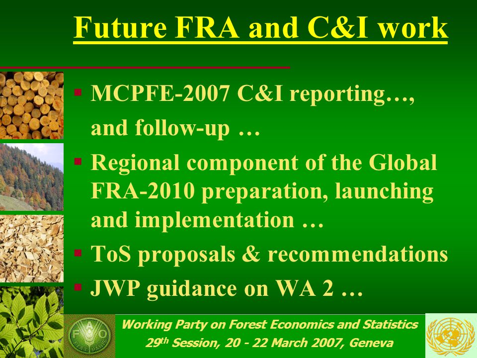 Working Party on Forest Economics and Statistics 29 th Session, 20 - 22 March 2007, Geneva Working Party is invited  To discuss and provide guidance for the follow-up to the Workshop on Inter-C&I processes collaboration , 8-10 June 2006, Bialowieza (Poland)  To support the EU COST Action E43 proposal of a techical- scientific workshop on C&I reporting by MP and MCPFE countries …