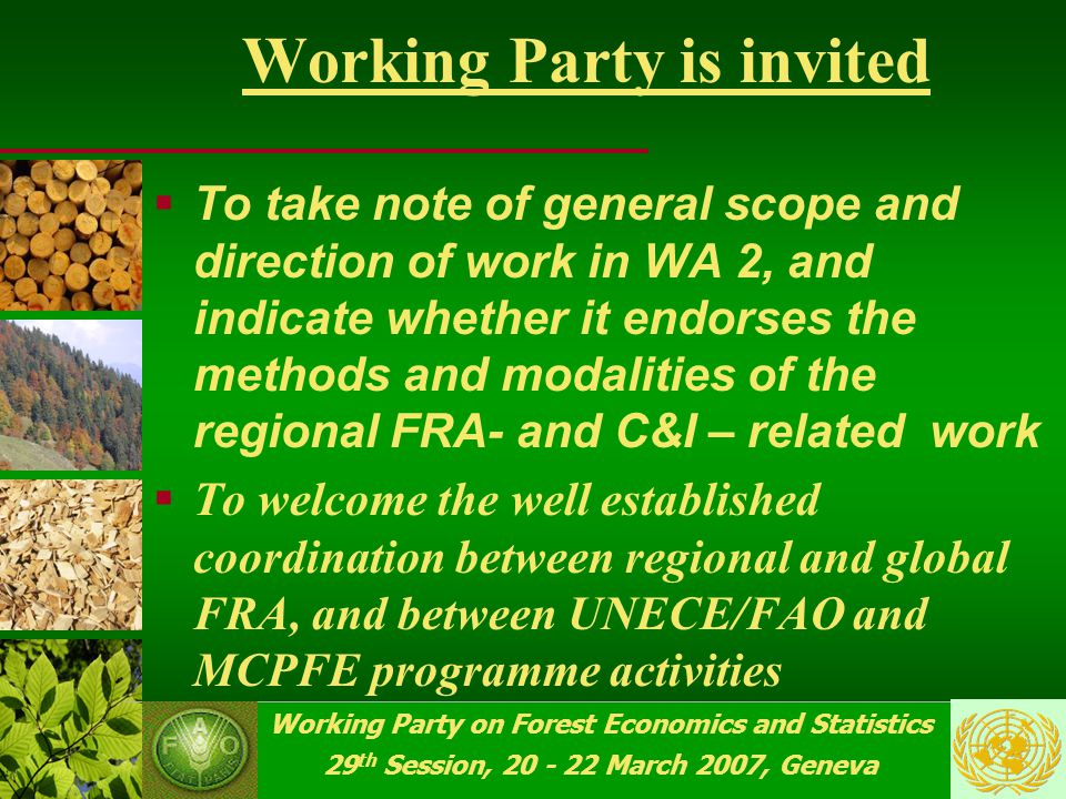 Working Party on Forest Economics and Statistics 29 th Session, 20 - 22 March 2007, Geneva Future FRA and C&I work  MCPFE-2007 C&I reporting…, and follow-up …  Regional component of the Global FRA-2010 preparation, launching and implementation …  ToS proposals & recommendations  JWP guidance on WA 2 …