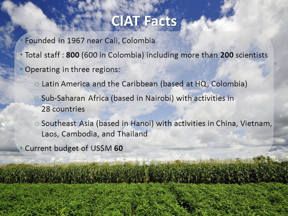 CIAT Facts Founded in 1967 near Cali, Colombia Total staff : 800 (600 in Colombia) including more than 200 scientists Operating in three regions: o La