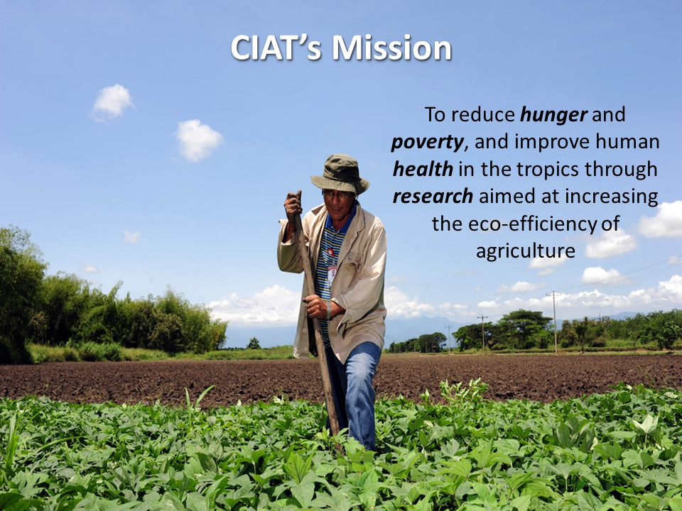 To reduce hunger and poverty, and improve human health in the tropics through research aimed at increasing the eco-efficiency of agriculture CIAT's Mi