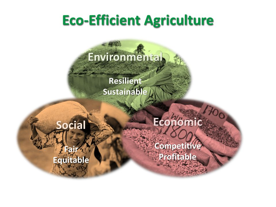 Eco-Efficient Agriculture
