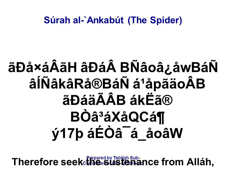 Prepared by Tablígh Sub- Committee of ISIJ of Toronto Súrah al-`Ankabút (The Spider) ãÐå×áÂãH âÐáBÑâoâ¿åwBáÑ âÍÑâkâRå®BáÑ á¹åpãäoÂB ãÐáäÃÂB ákËã® BÒ