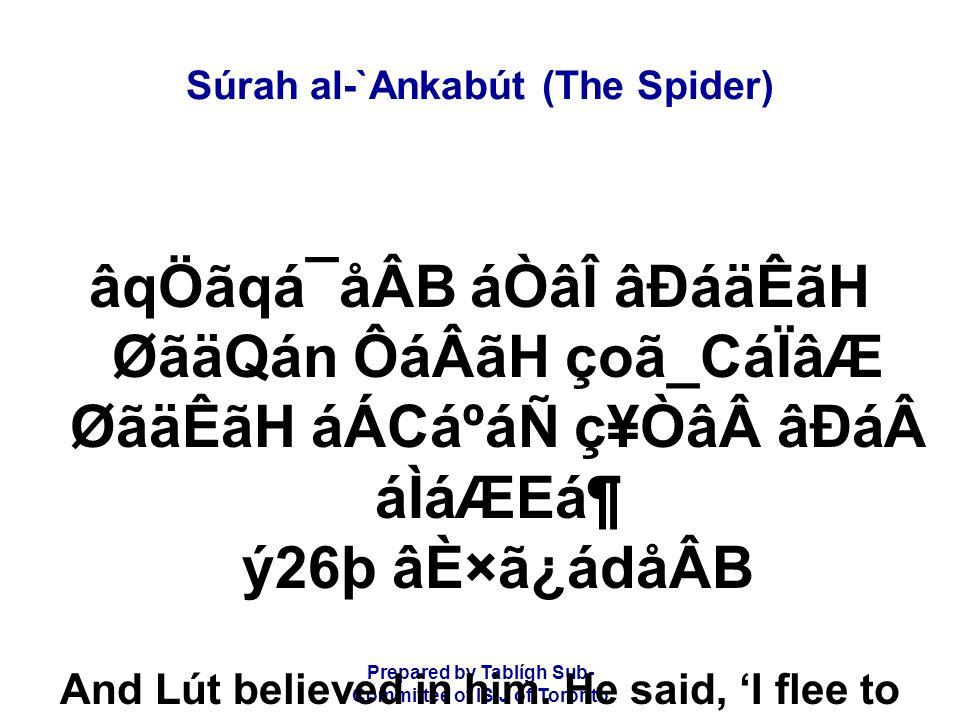 Prepared by Tablígh Sub- Committee of ISIJ of Toronto Súrah al-`Ankabút (The Spider) âqÖãqá¯åÂB áÒâÎ âÐáäÊãH ØãäQán ÔáÂãH çoã_CáÏâÆ ØãäÊãH áÁCáºáÑ ç¥Ò