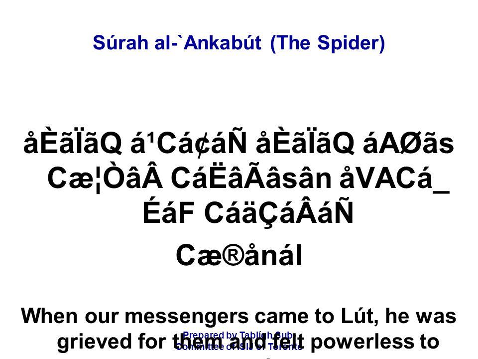 Prepared by Tablígh Sub- Committee of ISIJ of Toronto Súrah al-`Ankabút (The Spider) åÈãÏãQ á¹Cá¢áÑ åÈãÏãQ áAØãs Cæ¦ÒâCáËâÃâsân åVACá_ ÉáF CáäÇáÂáÑ