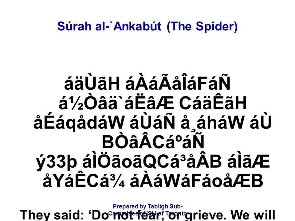 Prepared by Tablígh Sub- Committee of ISIJ of Toronto Súrah al-`Ankabút (The Spider) áäÙãH áÀáÃåÎáFáÑ á½Òâä`áËâÆ CáäÊãH åÉáqådáW áÙáÑ å¸áháW áÙ BÒâÂCá