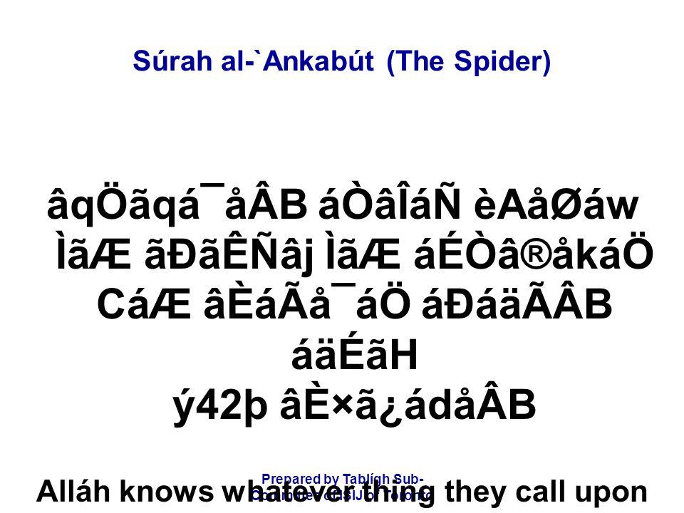 Prepared by Tablígh Sub- Committee of ISIJ of Toronto Súrah al-`Ankabút (The Spider) âqÖãqá¯åÂB áÒâÎáÑ èAåØáw ÌãÆ ãÐãÊÑâj ÌãÆ áÉÒâ®åkáÖ CáÆ âÈáÃå¯áÖ á