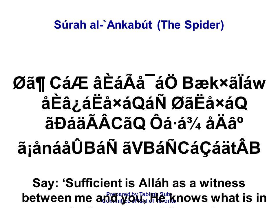 Prepared by Tablígh Sub- Committee of ISIJ of Toronto Súrah al-`Ankabút (The Spider) Ø㶠CáÆ âÈáÃå¯áÖ Bæk×ãÏáw åÈâ¿áËå×áQáÑ ØãËå×áQ ãÐáäÃÂCãQ Ôá·á¾ åÄ