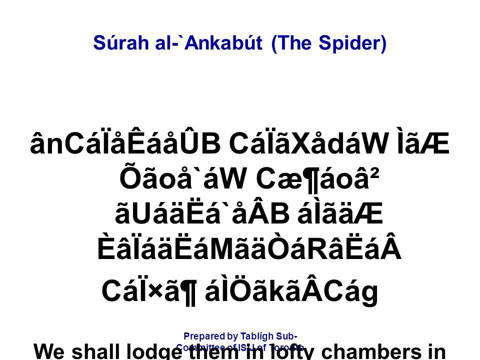 Prepared by Tablígh Sub- Committee of ISIJ of Toronto Súrah al-`Ankabút (The Spider) ânCáÏåÊáåÛB CáÏãXådáW ÌãÆ Õãoå`áW Cæ¶áoâ² ãUáäËá`åÂB áÌãäÆ ÈâÏáäË