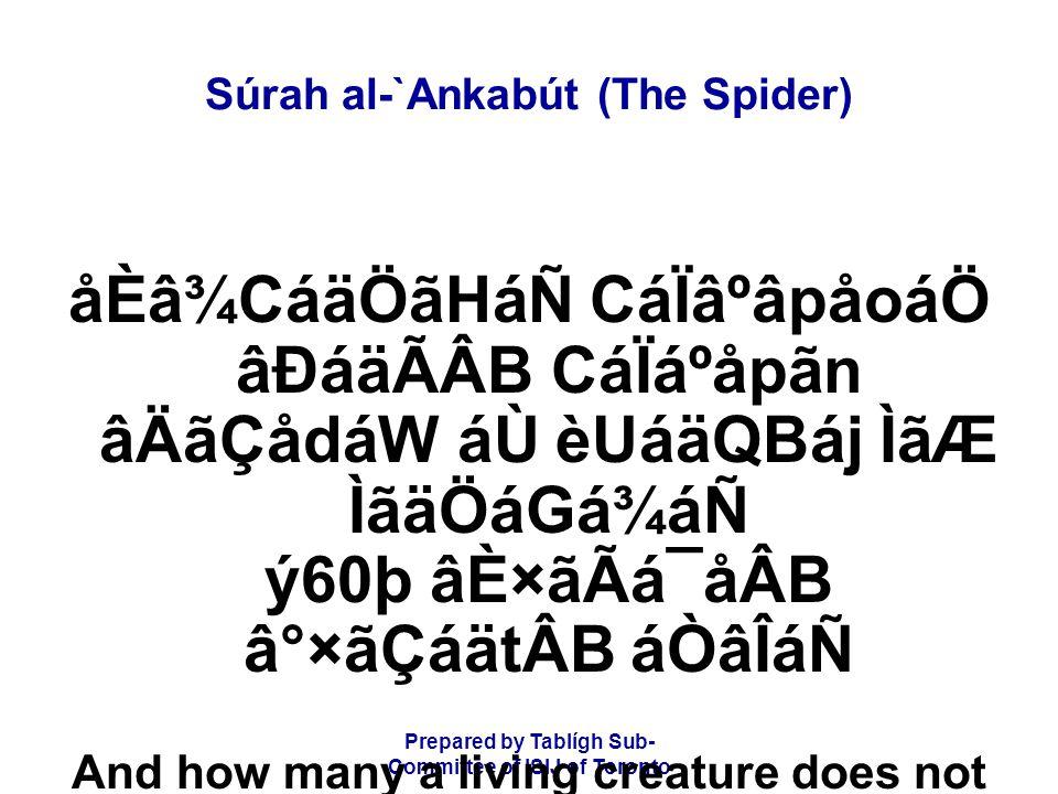Prepared by Tablígh Sub- Committee of ISIJ of Toronto Súrah al-`Ankabút (The Spider) åÈâ¾CáäÖãHáÑ CáÏâºâpåoáÖ âÐáäÃÂB CáÏáºåpãn âÄãÇådáW áÙ èUáäQBáj Ì