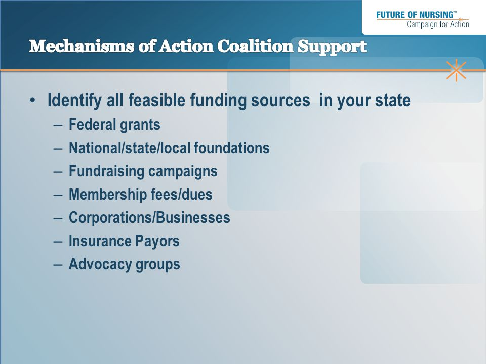 Identify all feasible funding sources in your state – Federal grants – National/state/local foundations – Fundraising campaigns – Membership fees/dues – Corporations/Businesses – Insurance Payors – Advocacy groups