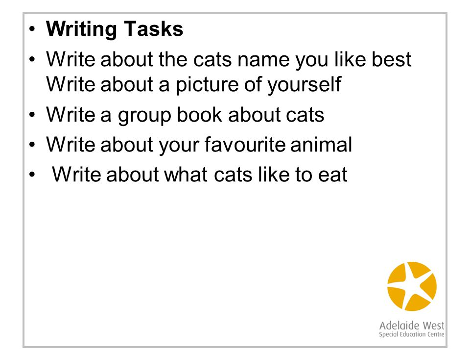 Writing Tasks Write about the cats name you like best Write about a picture of yourself Write a group book about cats Write about your favourite animal Write about what cats like to eat