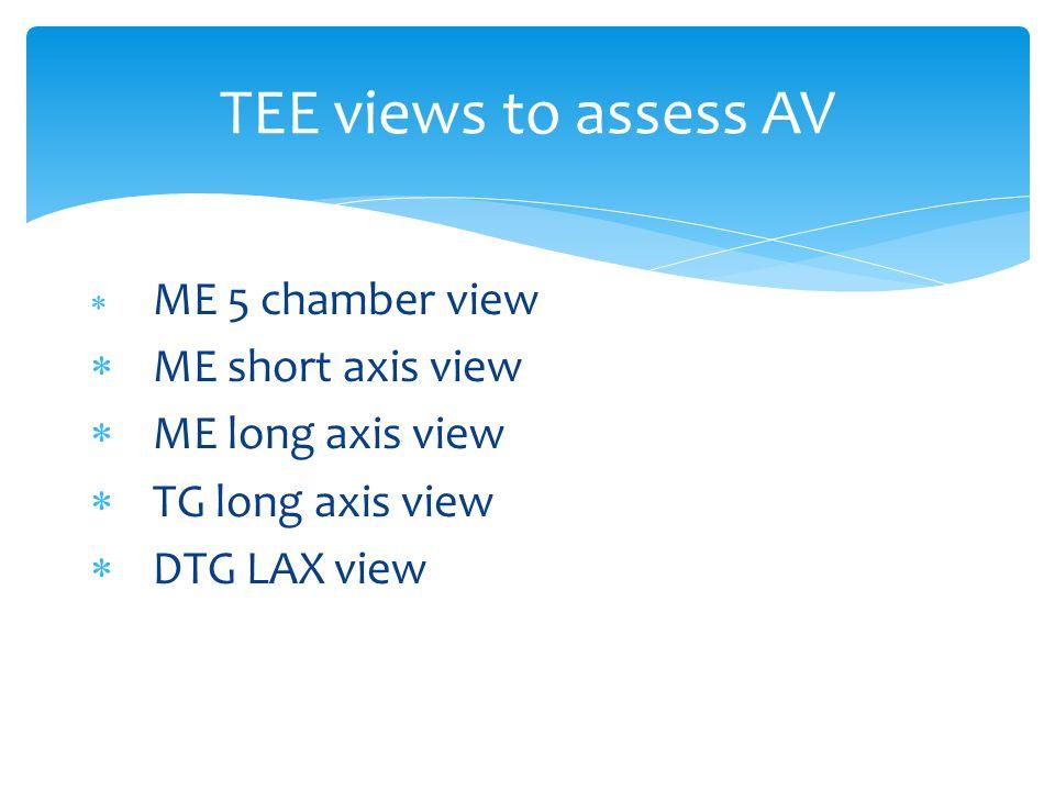  ME 5 chamber view  ME short axis view  ME long axis view  TG long axis view  DTG LAX view TEE views to assess AV