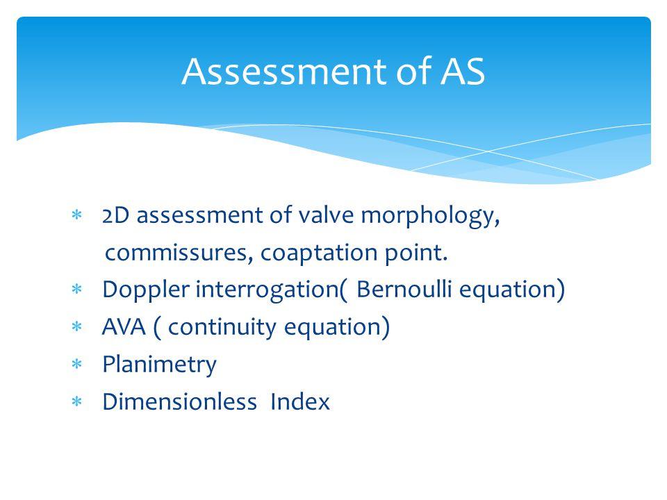  2D assessment of valve morphology, commissures, coaptation point.