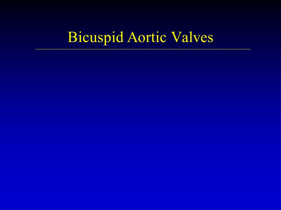 Bicuspid Aortic Valves