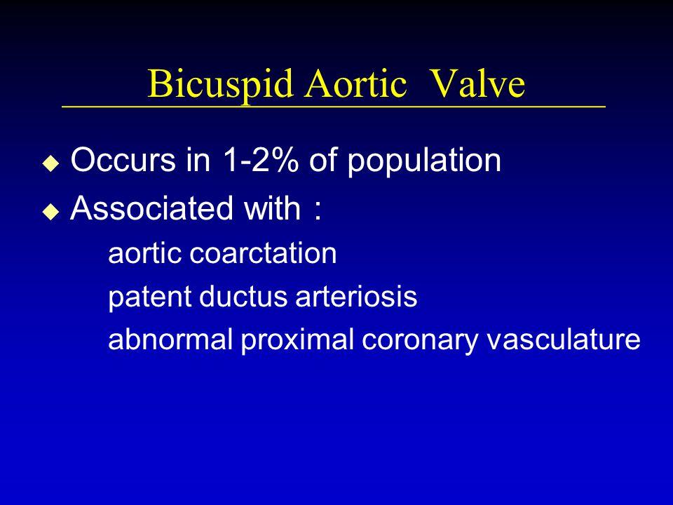 Bicuspid Aortic Valve u u Occurs in 1-2% of population u u Associated with : aortic coarctation patent ductus arteriosis abnormal proximal coronary va